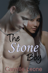 The Stone Boy ebook cover