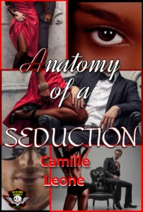 Anatomy of a Seduction ebook cover small size copy